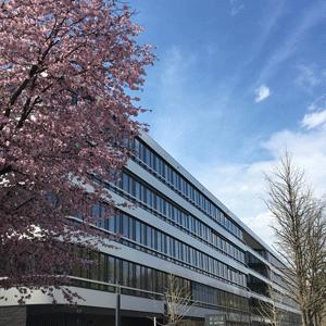 Newton-JDI-Europe-Spring